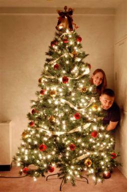 Christmas Tree Asheboro