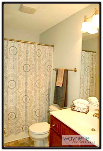 Randolph County home - 1973 Burney Rd - master bathroom